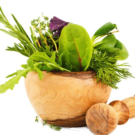 Description of Indian medicinal Plants in Hindi language