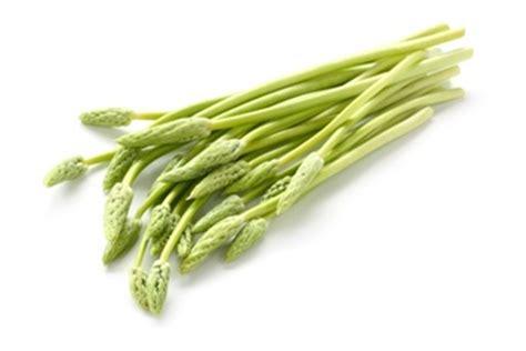 List of Ayurvedic Medicinal Plants, Herbs, Herbal Plants